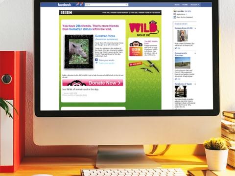 BBC Wild Night In Facebook Application